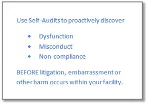 self_audit_Assessments