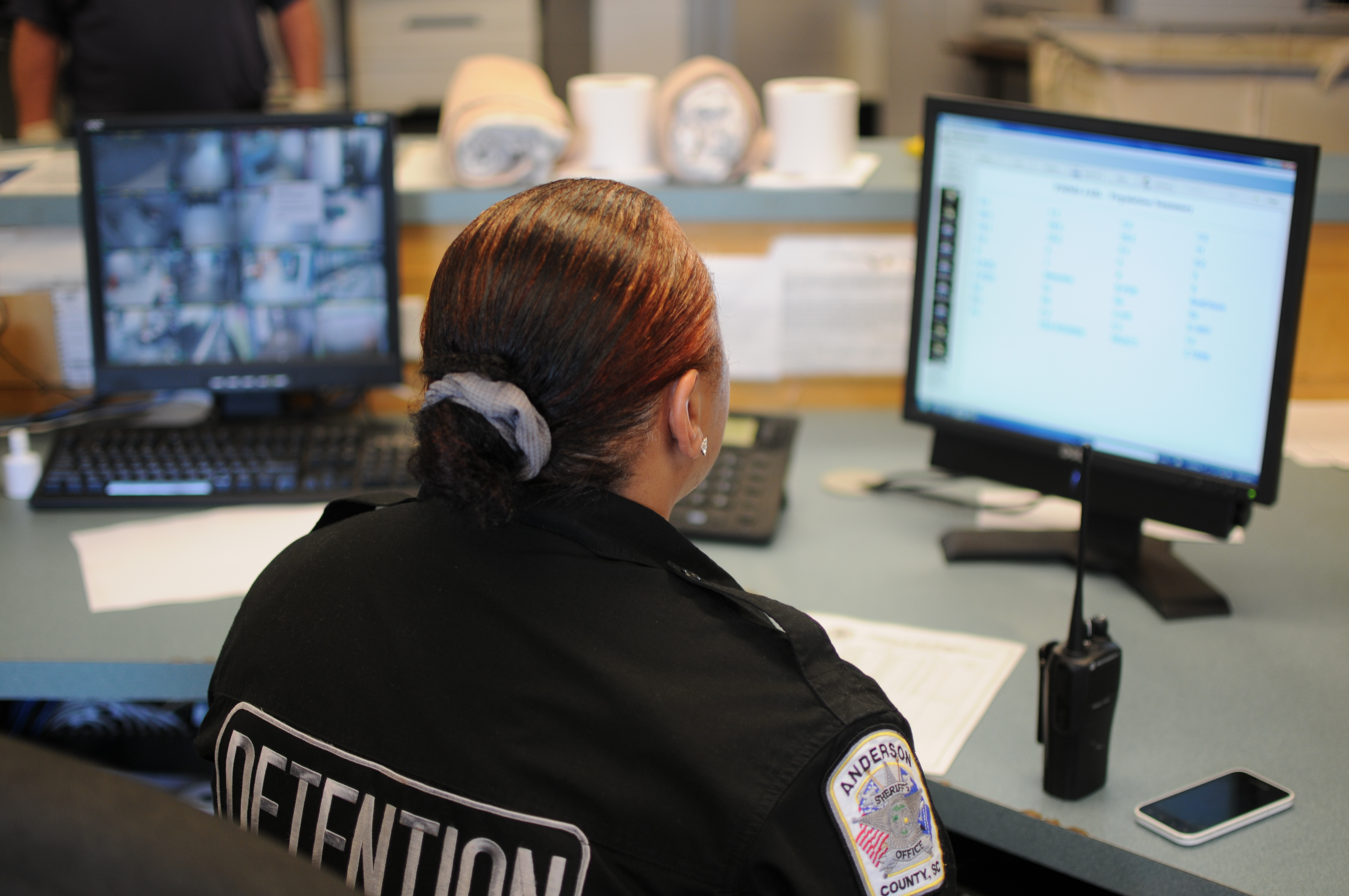 Corrections Officer taking online training